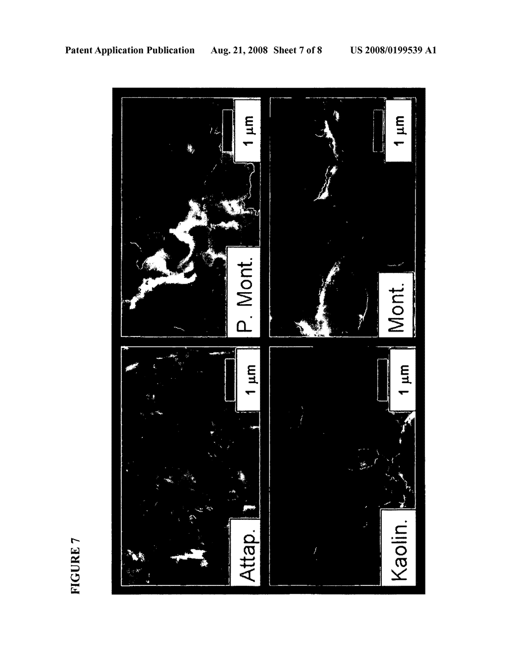 HEMOSTATIC COMPOSITIONS AND METHODS OF USE - diagram, schematic, and image 08