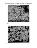 Hydroxyapatite With Controllable Size And Morphology diagram and image