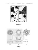 CORE-SHELL NANOPARTICLES WITH MULTIPLE CORES AND A METHOD FOR FABRICATING THEM diagram and image