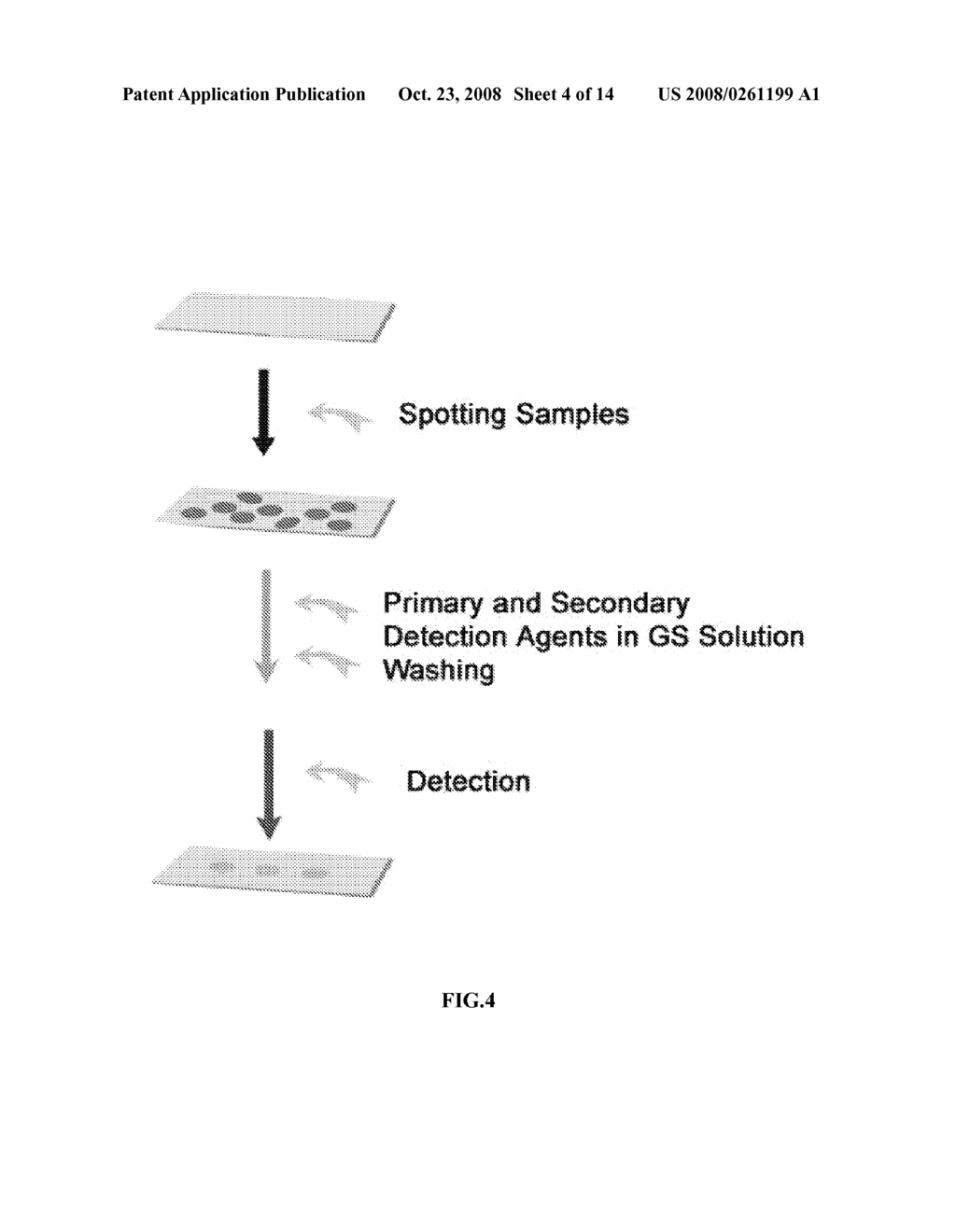 RAPID DETECTION PROCESSES AND RELATED COMPOSITIONS - diagram, schematic, and image 05