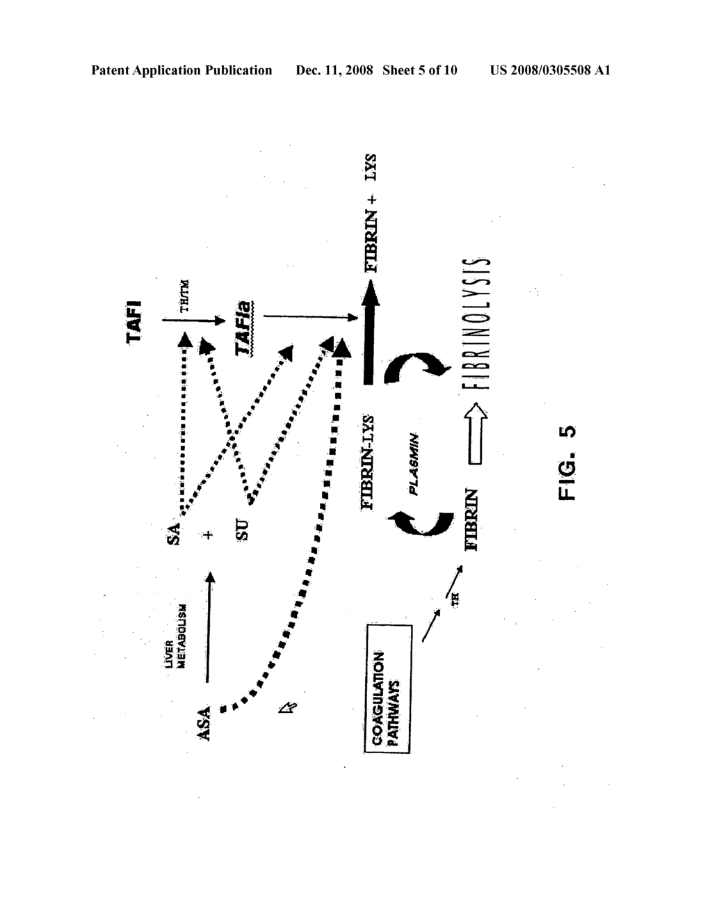 Methods of screening for compounds that modulate TAFIa activity, compounds, and methods of using the compounds - diagram, schematic, and image 06