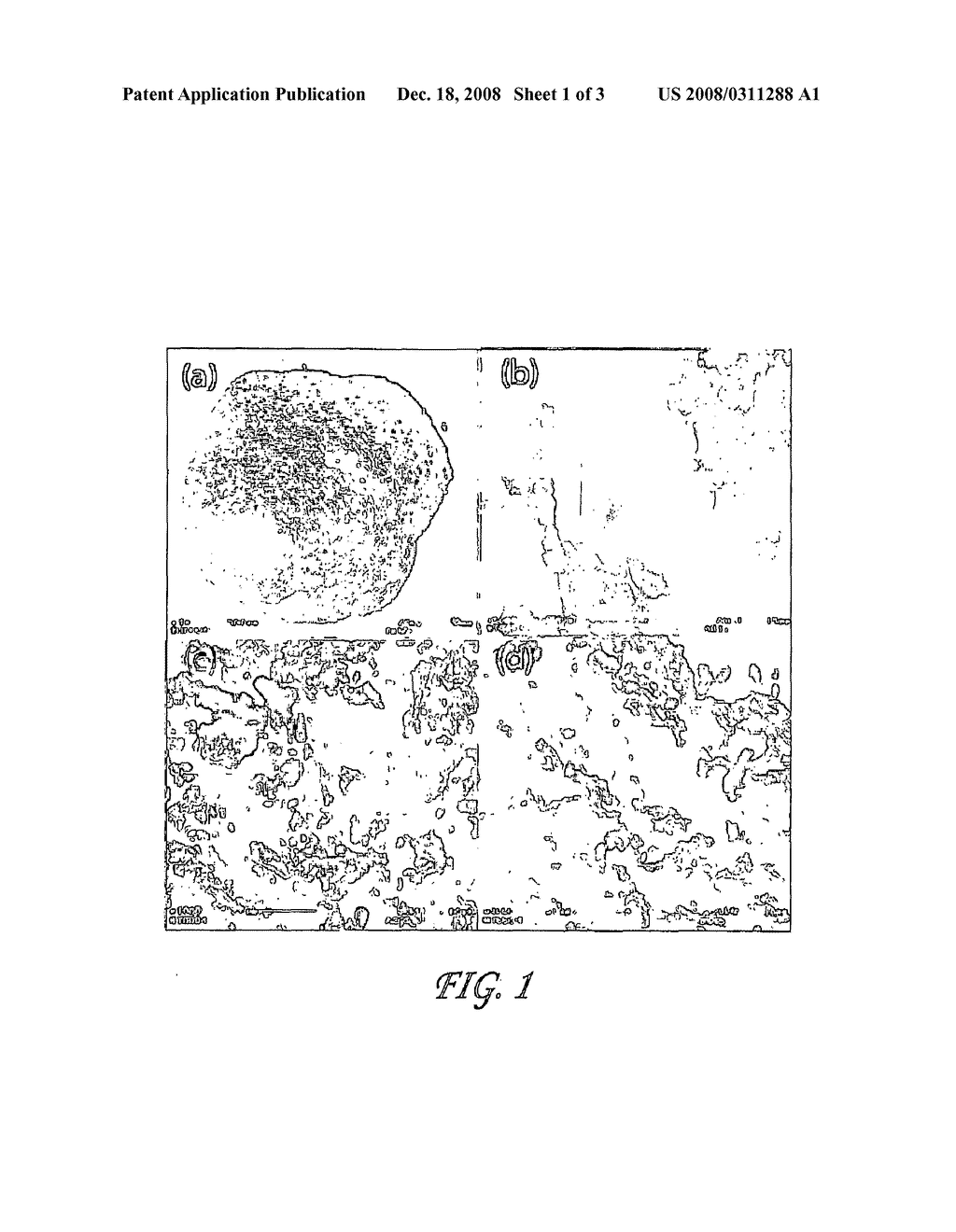 Methods and Compositions for Removal of Arsenic and Heavy Metals From Water - diagram, schematic, and image 02