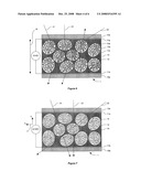 POLYMER-DISPERSED LIQUID CRYSTAL STRUCTURES diagram and image