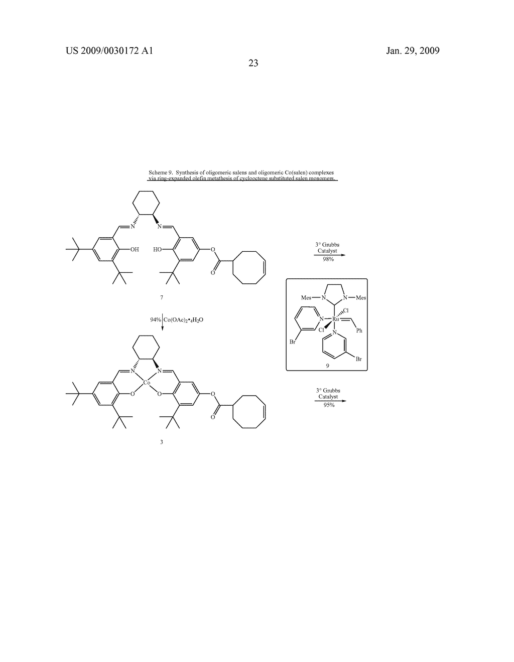 POLYMERIC SALEN COMPOUNDS AND METHODS THEREOF - diagram, schematic, and image 24
