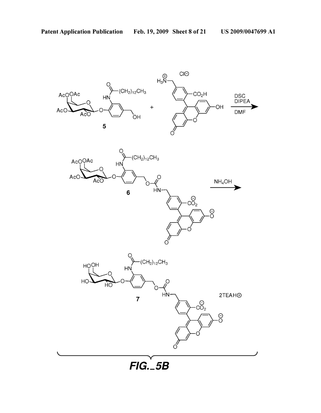FLUOROGENIC ENZYME ACTIVITY ASSAY METHODS AND COMPOSITIONS USING FRAGMENTABLE LINKERS - diagram, schematic, and image 09