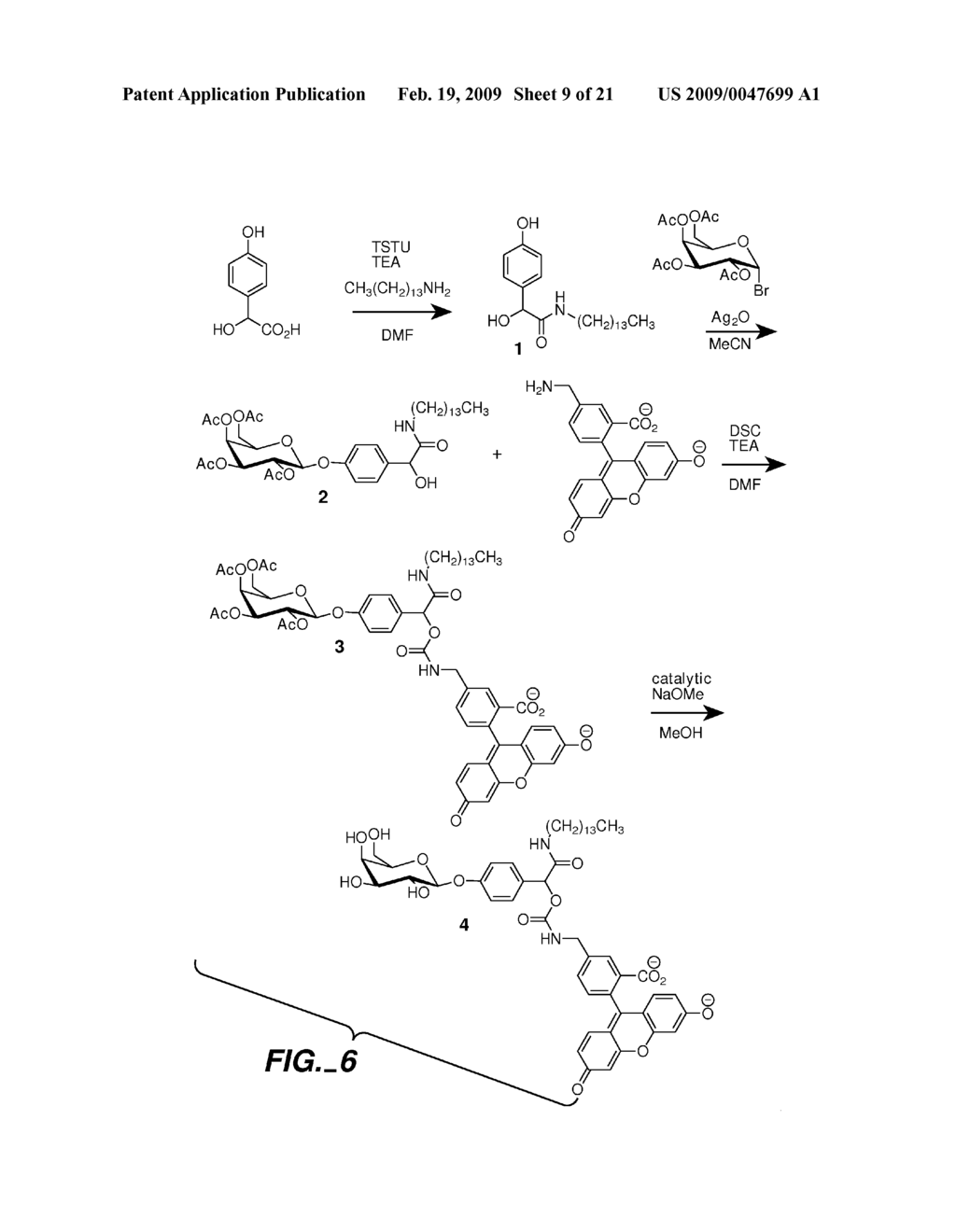 FLUOROGENIC ENZYME ACTIVITY ASSAY METHODS AND COMPOSITIONS USING FRAGMENTABLE LINKERS - diagram, schematic, and image 10