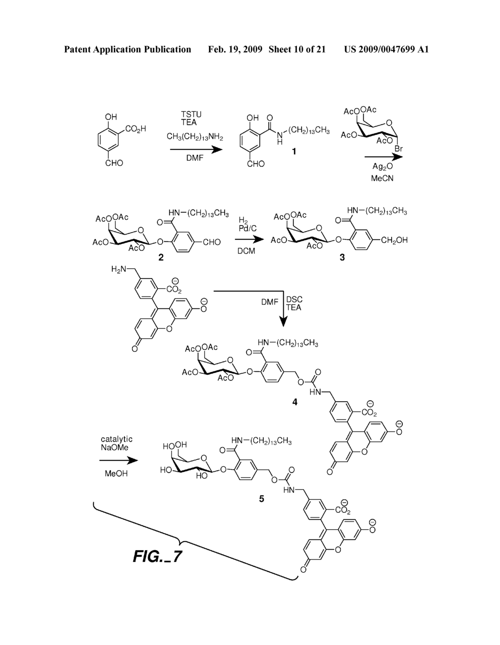 FLUOROGENIC ENZYME ACTIVITY ASSAY METHODS AND COMPOSITIONS USING FRAGMENTABLE LINKERS - diagram, schematic, and image 11