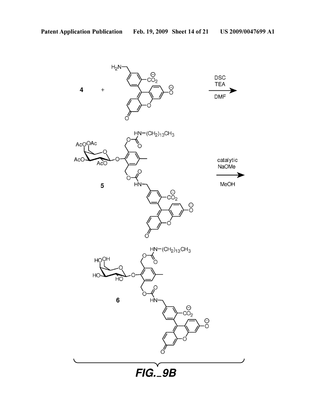 FLUOROGENIC ENZYME ACTIVITY ASSAY METHODS AND COMPOSITIONS USING FRAGMENTABLE LINKERS - diagram, schematic, and image 15