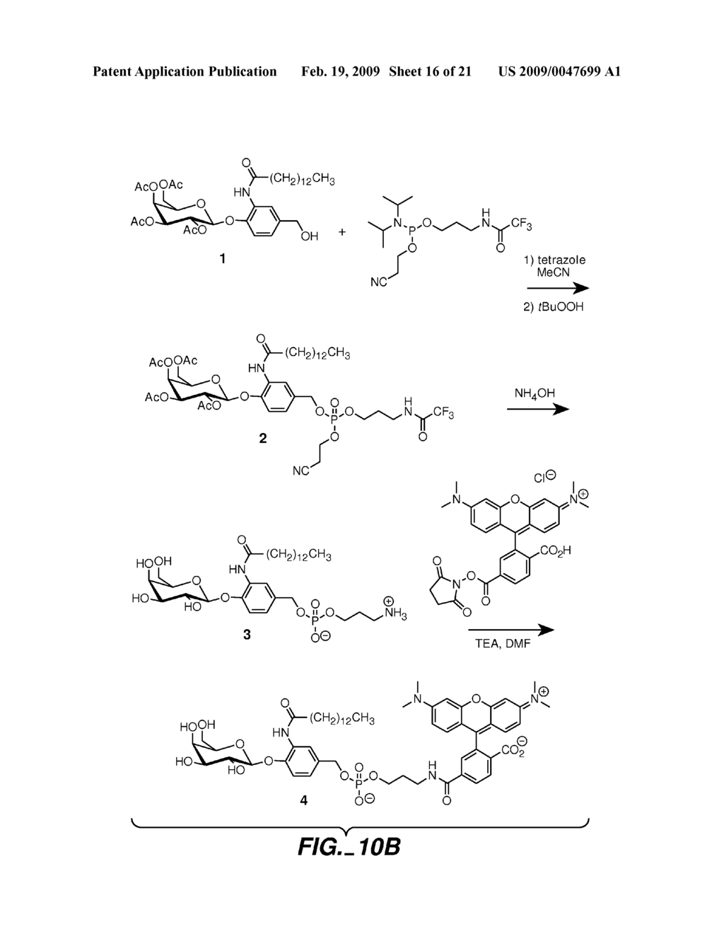 FLUOROGENIC ENZYME ACTIVITY ASSAY METHODS AND COMPOSITIONS USING FRAGMENTABLE LINKERS - diagram, schematic, and image 17