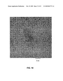 METHOD OF FORMING STABLE FUNCTIONALIZED NANOPARTICLES diagram and image