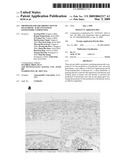 Promoter For The Production Of Hyaluronic Acid Containing Ginsenoside Compound K diagram and image
