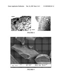 HIGHLY POROUS, RECOGNITIVE POLYMER SYSTEMS diagram and image