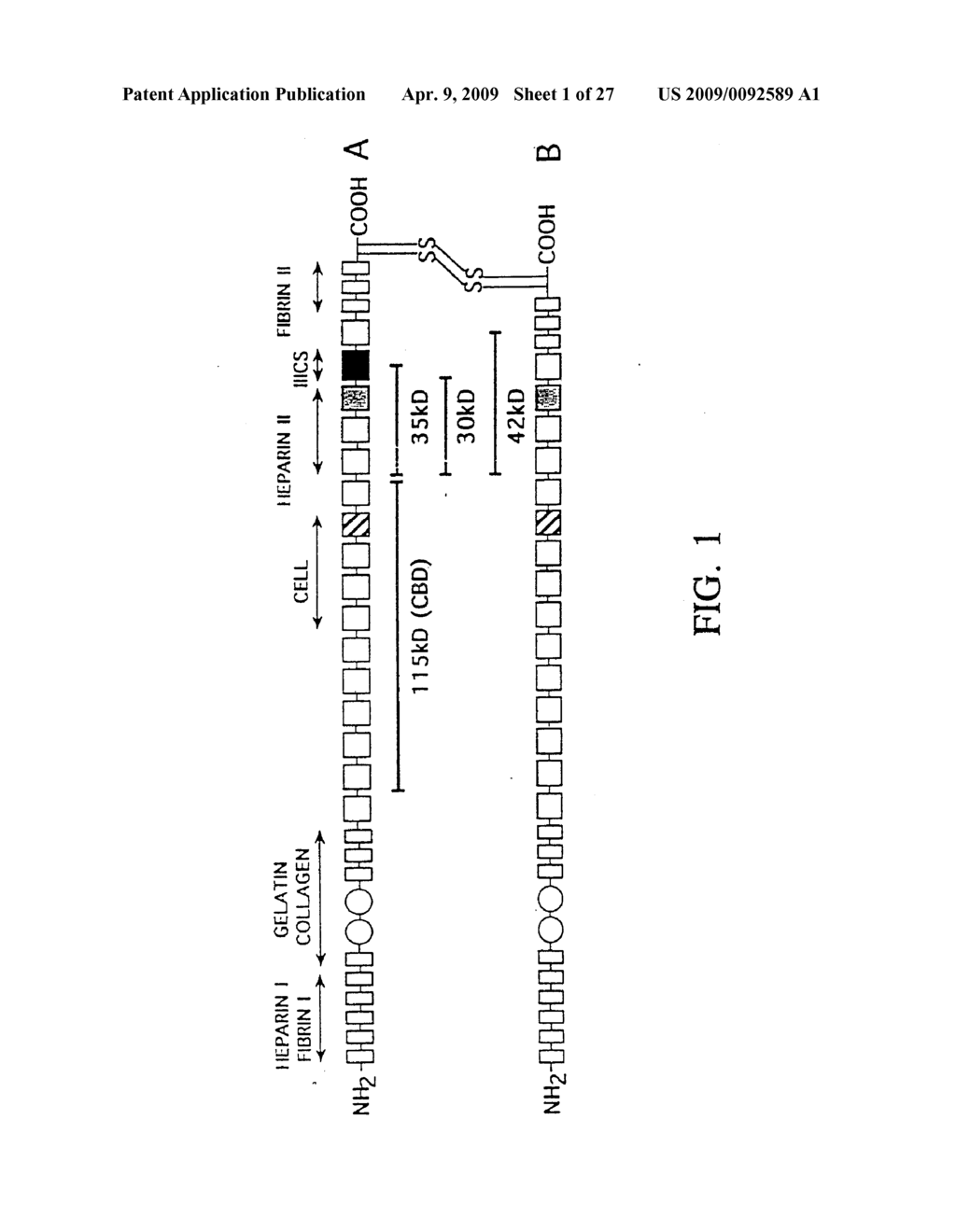 METHODS FOR ENHANCED VIRUS-MEDIATED DNA TRANSFER USING MOLECULES WITH VIRUS- AND CELL-BINDING DOMAINS - diagram, schematic, and image 02