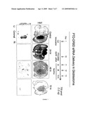 TRANSDUCIBLE DELIVERY OF siRNA BY dsRNA BINDING DOMAIN FUSIONS TO PTD/CPPS diagram and image