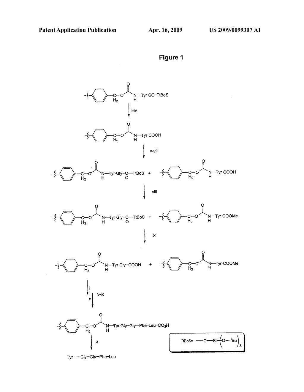 Inverse solid phase peptide synthesis with additional capping step - diagram, schematic, and image 02