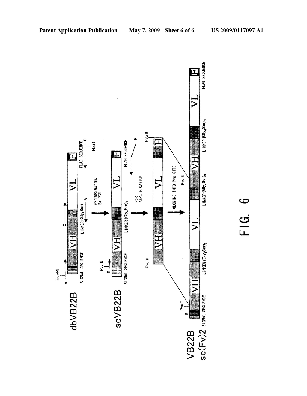 Stabilizer for Protein Preparation Comprising Meglumine and Use Thereof - diagram, schematic, and image 07