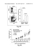 TARGETING ABCB5 FOR CANCER THERAPY diagram and image