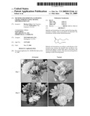 Methods for Improving Flowering Characteristics Using Methyl Dihydrojasmonate diagram and image