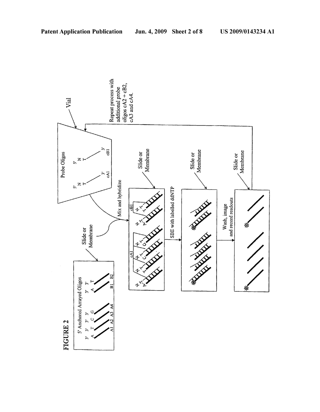QUALITY CONTROL METHODS FOR ARRAYED OLIGONUCLEOTIDES - diagram, schematic, and image 03
