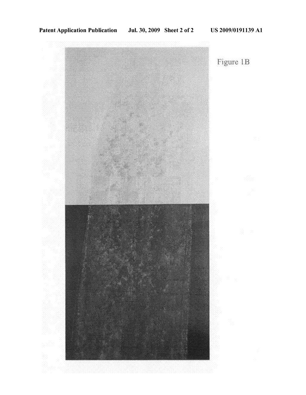 WATER BASE SLURRY COMPOSITION FOR COSMETIC PRODUCTS AND METHODS OF USE - diagram, schematic, and image 03