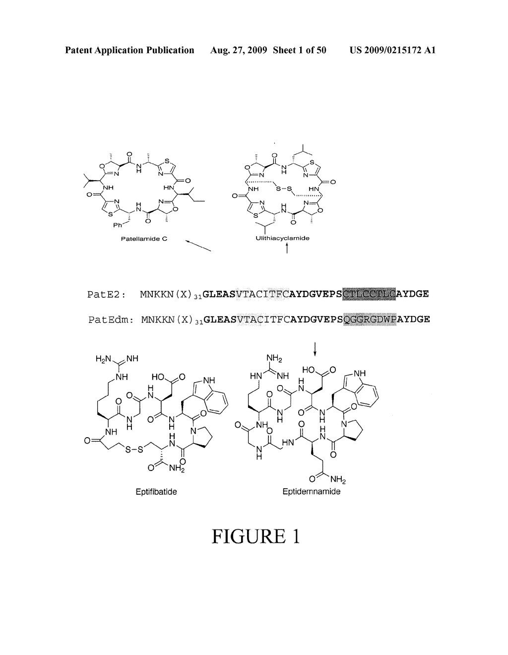 Methods and Compositions Related to Cyclic Peptide Synthesis - diagram, schematic, and image 02