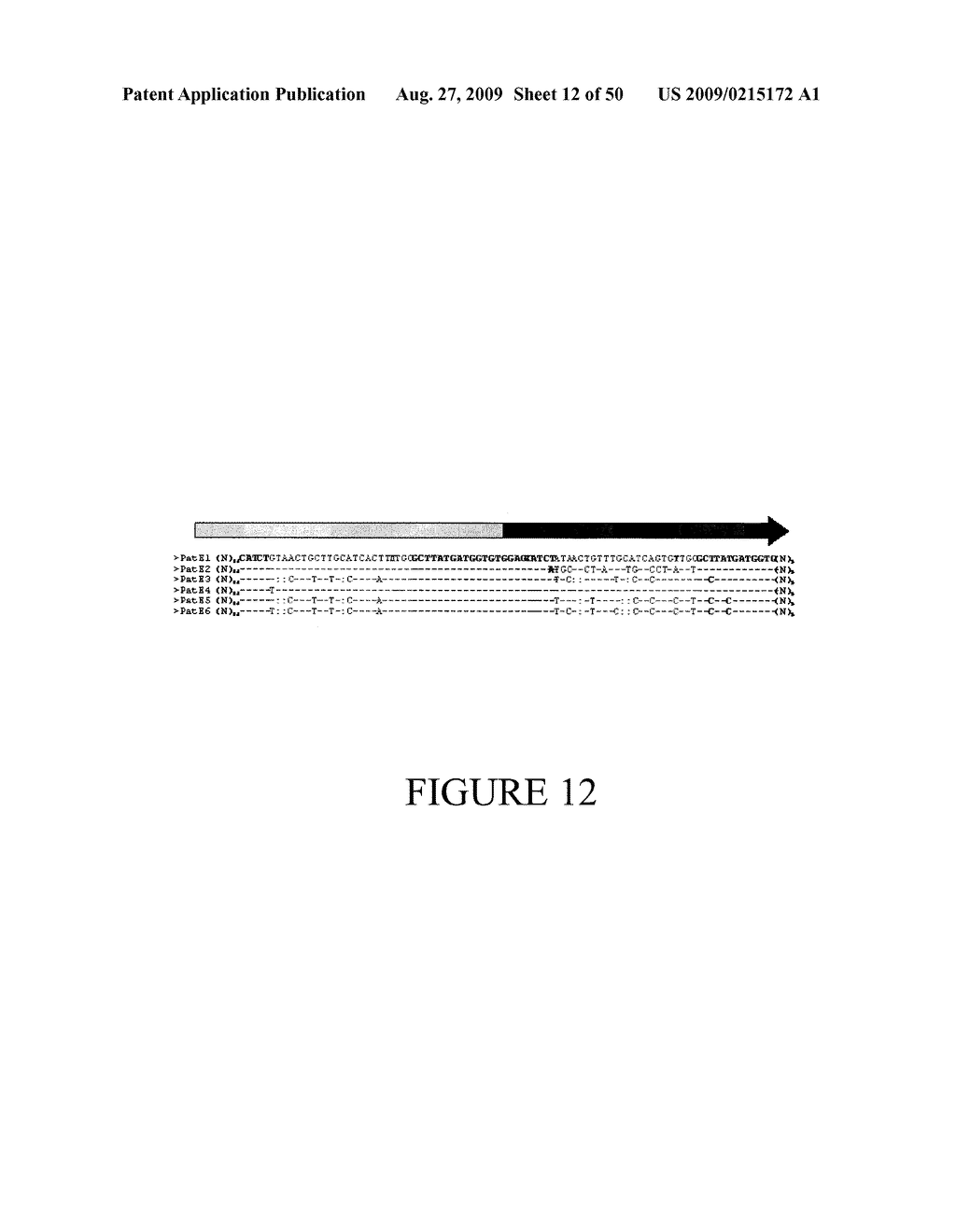 Methods and Compositions Related to Cyclic Peptide Synthesis - diagram, schematic, and image 13