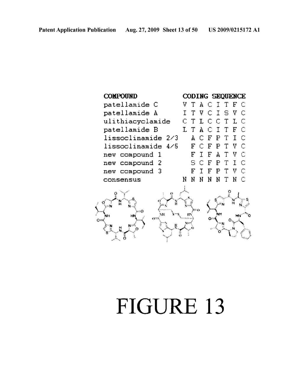 Methods and Compositions Related to Cyclic Peptide Synthesis - diagram, schematic, and image 14