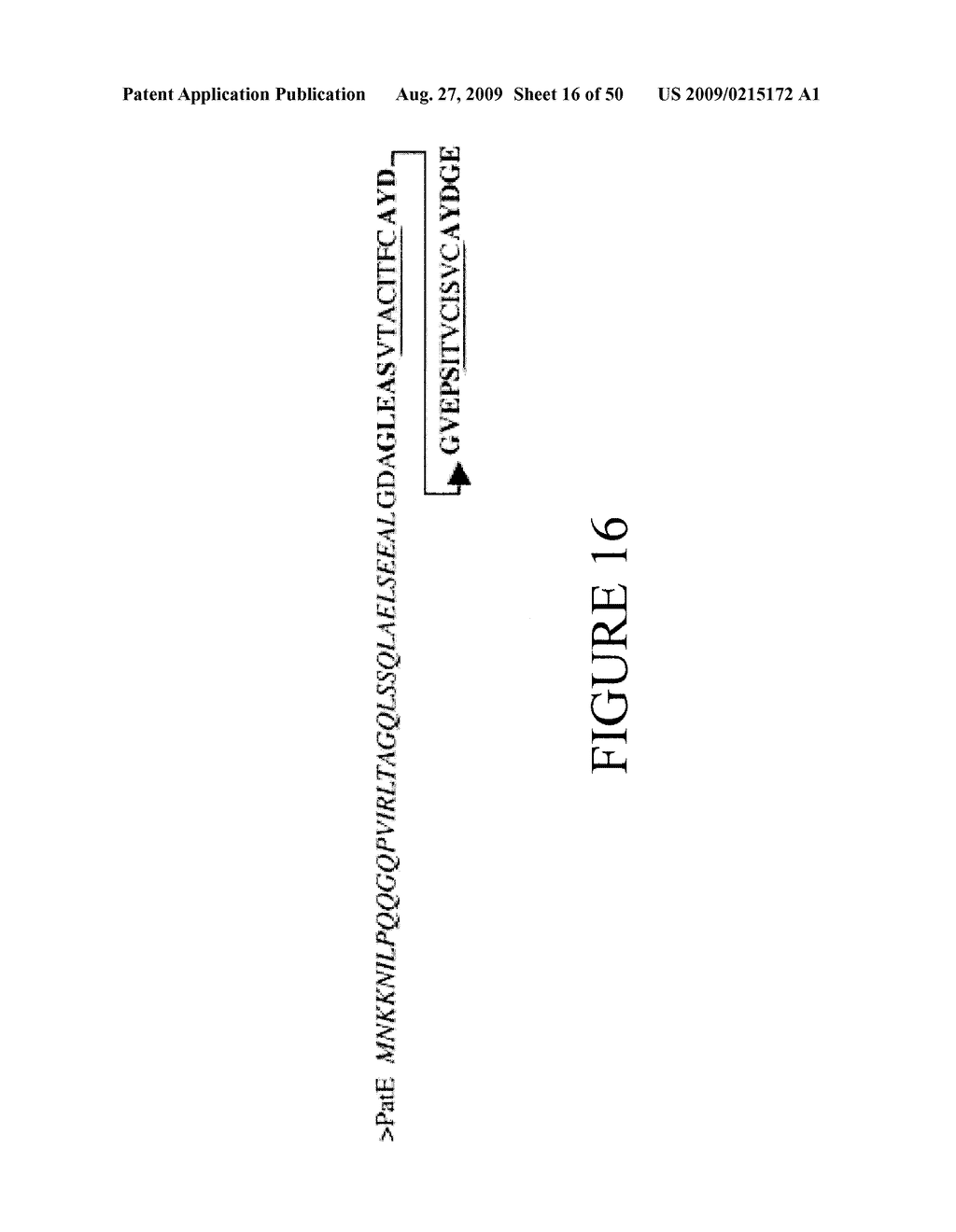 Methods and Compositions Related to Cyclic Peptide Synthesis - diagram, schematic, and image 17