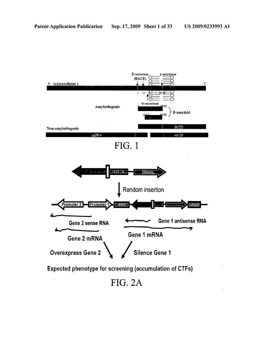 COMPOSITIONS AND METHODS FOR INHIBITING GSK3 ACTIVITY AND USES THEREOF - diagram, schematic, and image 02