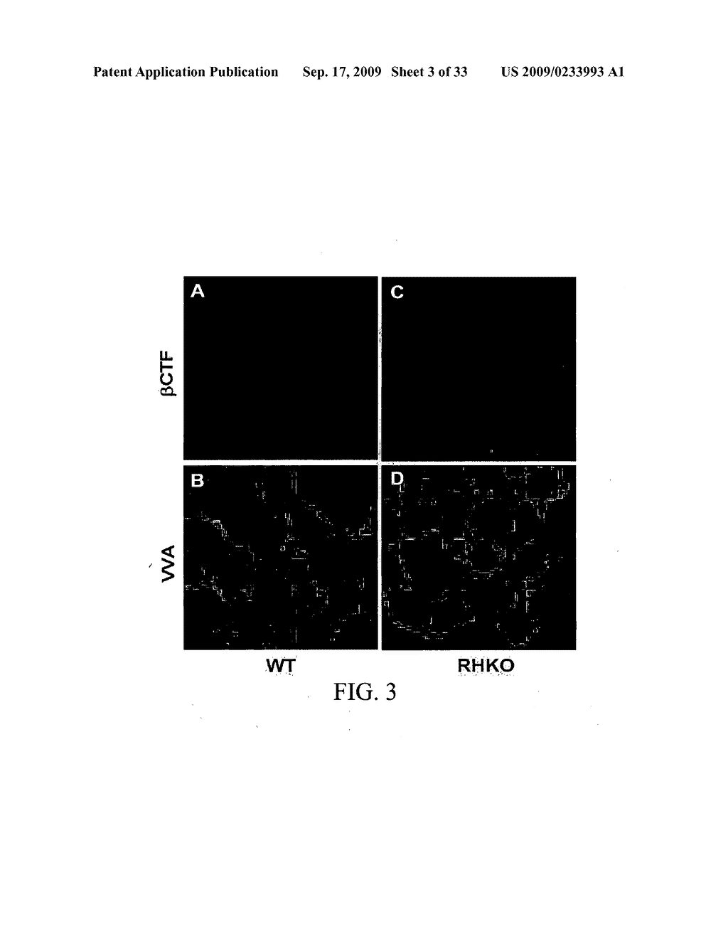 COMPOSITIONS AND METHODS FOR INHIBITING GSK3 ACTIVITY AND USES THEREOF - diagram, schematic, and image 04