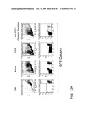 Engineering and Delivery of Therapeutic Compositions of Freshly Isolated Cells diagram and image
