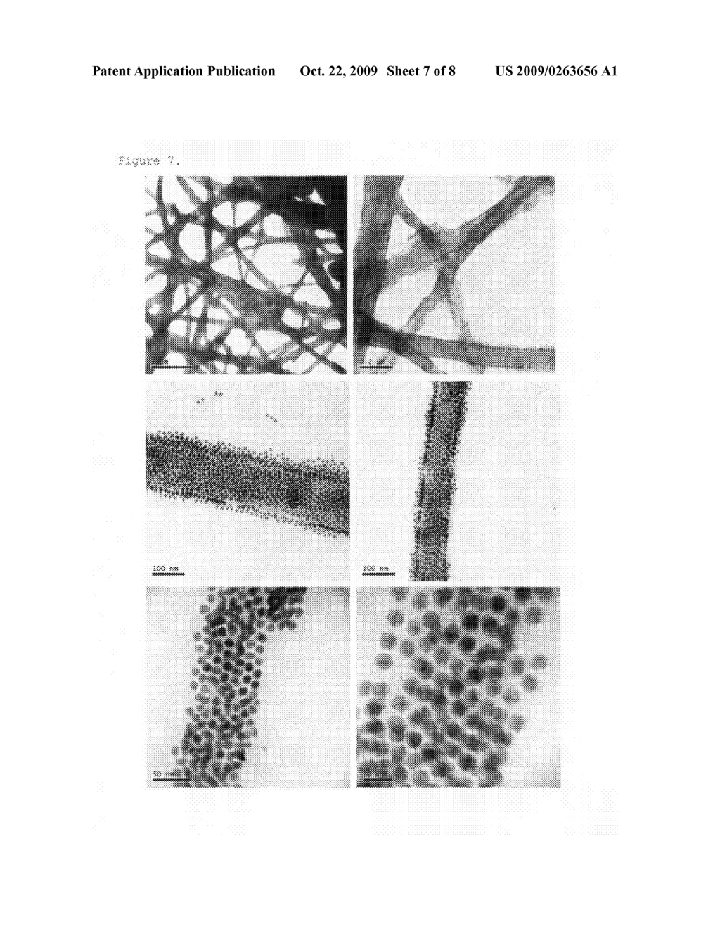 Organic-inorganic hybrid structures having nanoparticles adhering thereon and method for preparing the same - diagram, schematic, and image 08