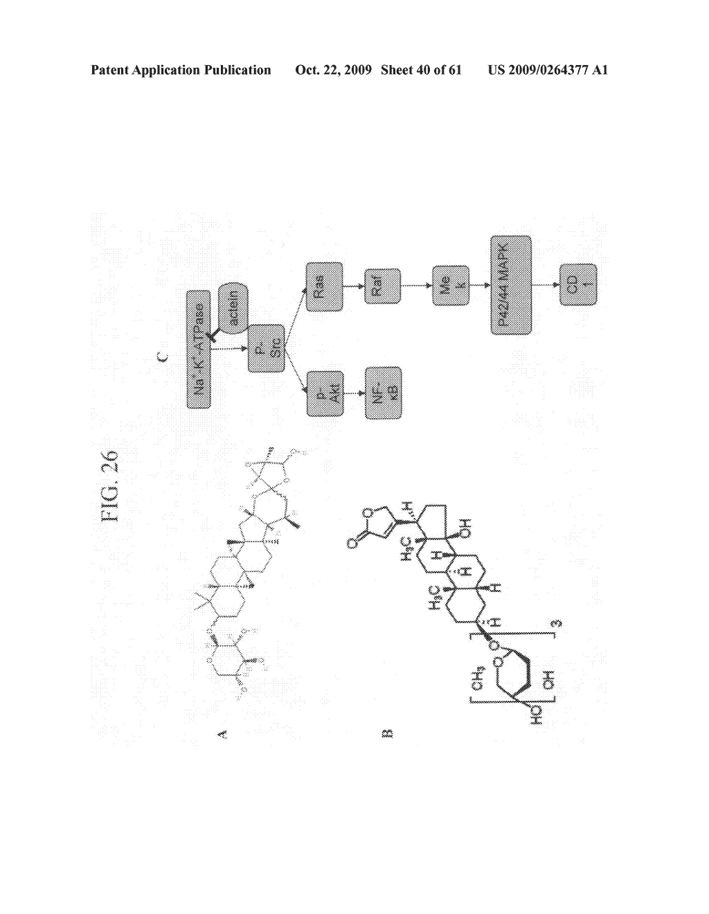 Anti-neoplastic compositions comprising extracts of black cohosh - diagram, schematic, and image 41