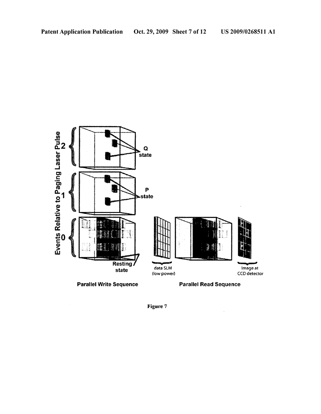 Bacteriorhodopsin Protein Variants and Methods of Use for Long Term Data Storage - diagram, schematic, and image 08