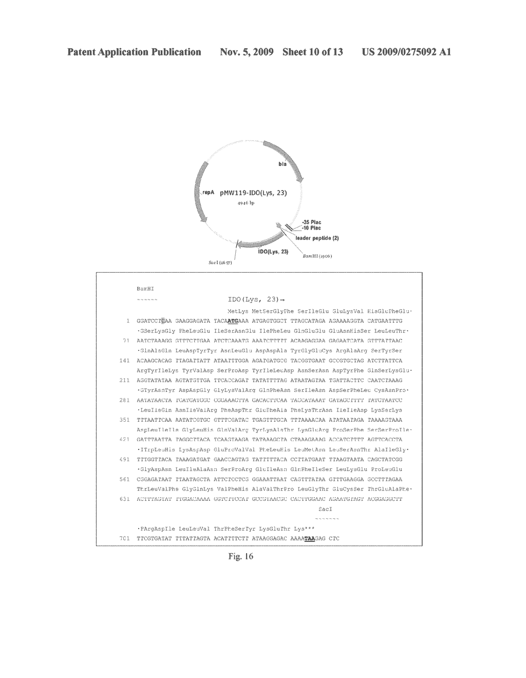 METHOD FOR PRODUCING 4-HYDROXY-L-ISOLEUCINE - diagram, schematic, and image 11