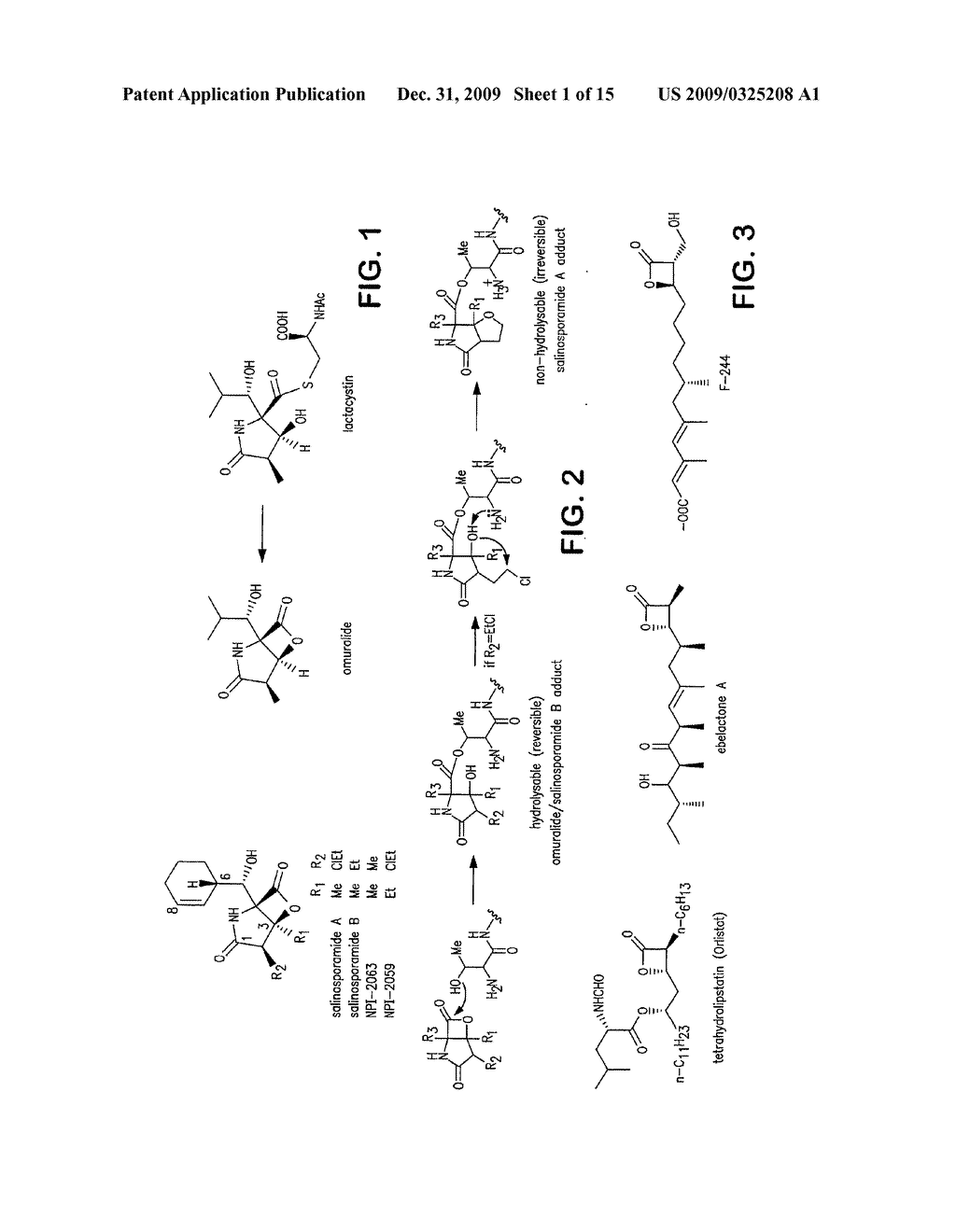 Biosynthesis of Salinosporamide A and Analogs and Methods Thereof - diagram, schematic, and image 02