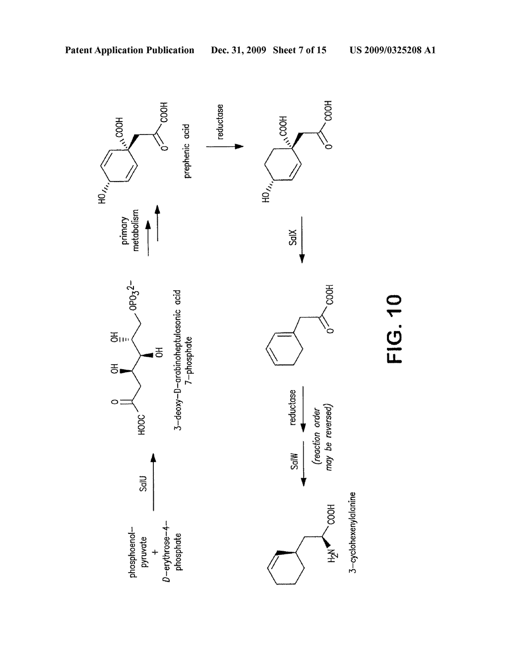 Biosynthesis of Salinosporamide A and Analogs and Methods Thereof - diagram, schematic, and image 08
