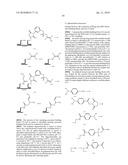 TEMPLATED MOLECULES AND METHODS FOR USING SUCH MOLECULES diagram and image