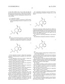 Zilpaterol Enantiomer Compositions and Methods of Making and Using Such Compositions diagram and image