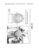 SURGICALLY IMPLANTED MICRO-PLATFORMS AND MICROSYSTEMS IN ARTHROPODS AND METHODS BASED THEREON diagram and image
