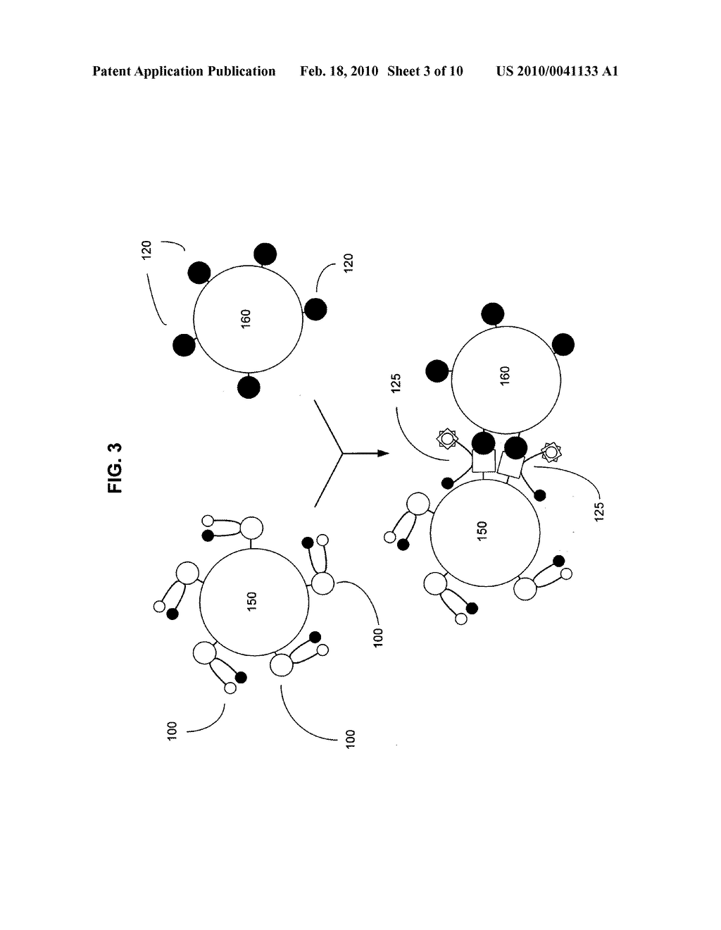 Biological targeting compositions and methods of using the same - diagram, schematic, and image 04