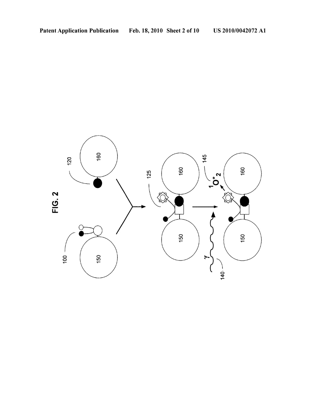 Biological targeting compositions and methods of using the same - diagram, schematic, and image 03