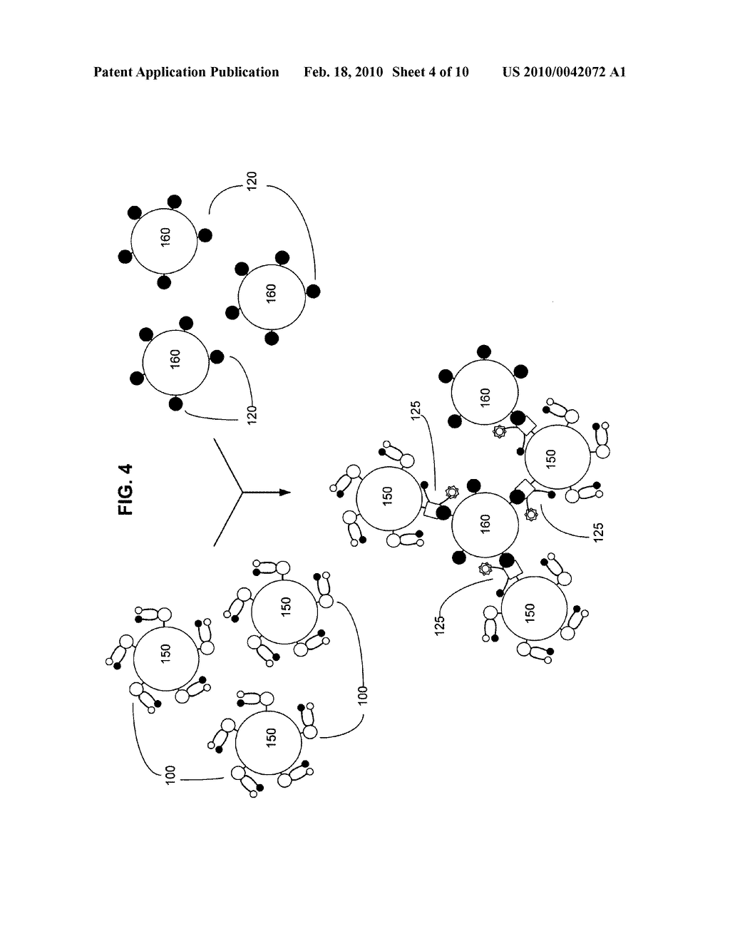 Biological targeting compositions and methods of using the same - diagram, schematic, and image 05
