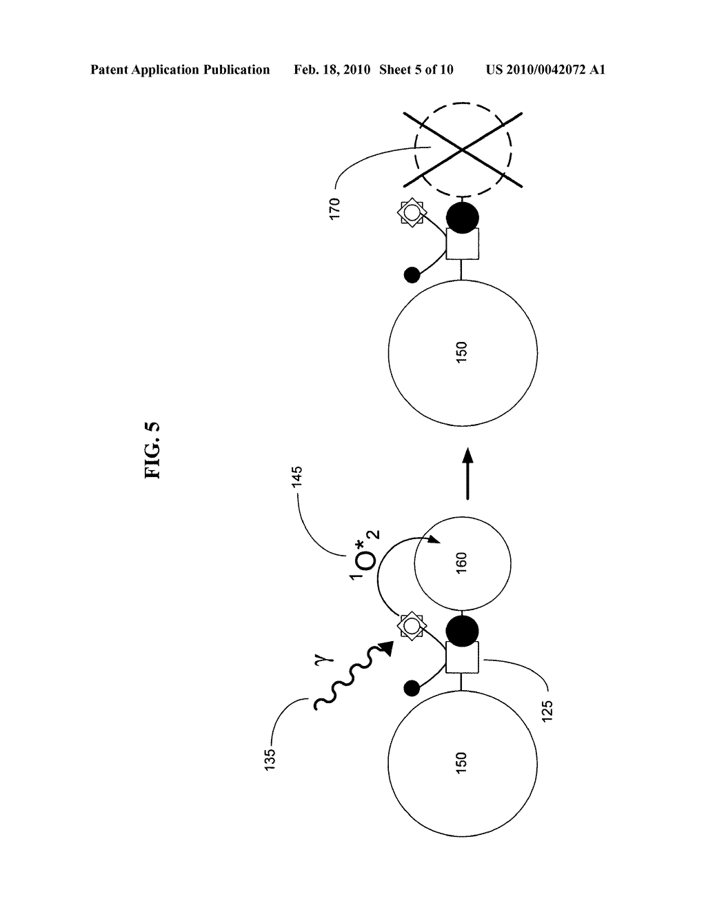 Biological targeting compositions and methods of using the same - diagram, schematic, and image 06