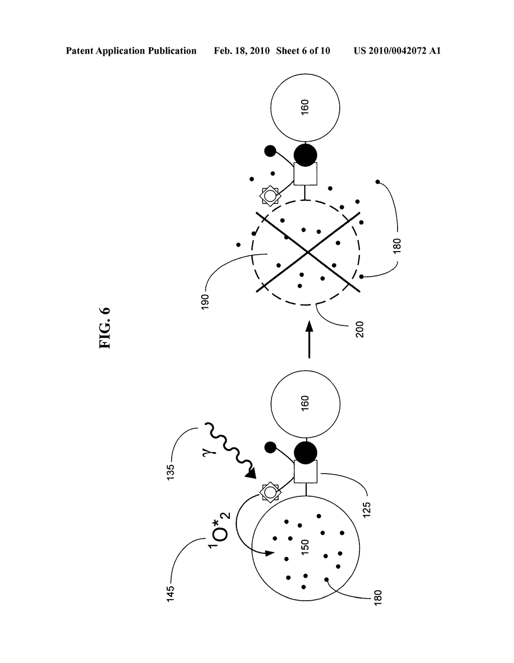 Biological targeting compositions and methods of using the same - diagram, schematic, and image 07
