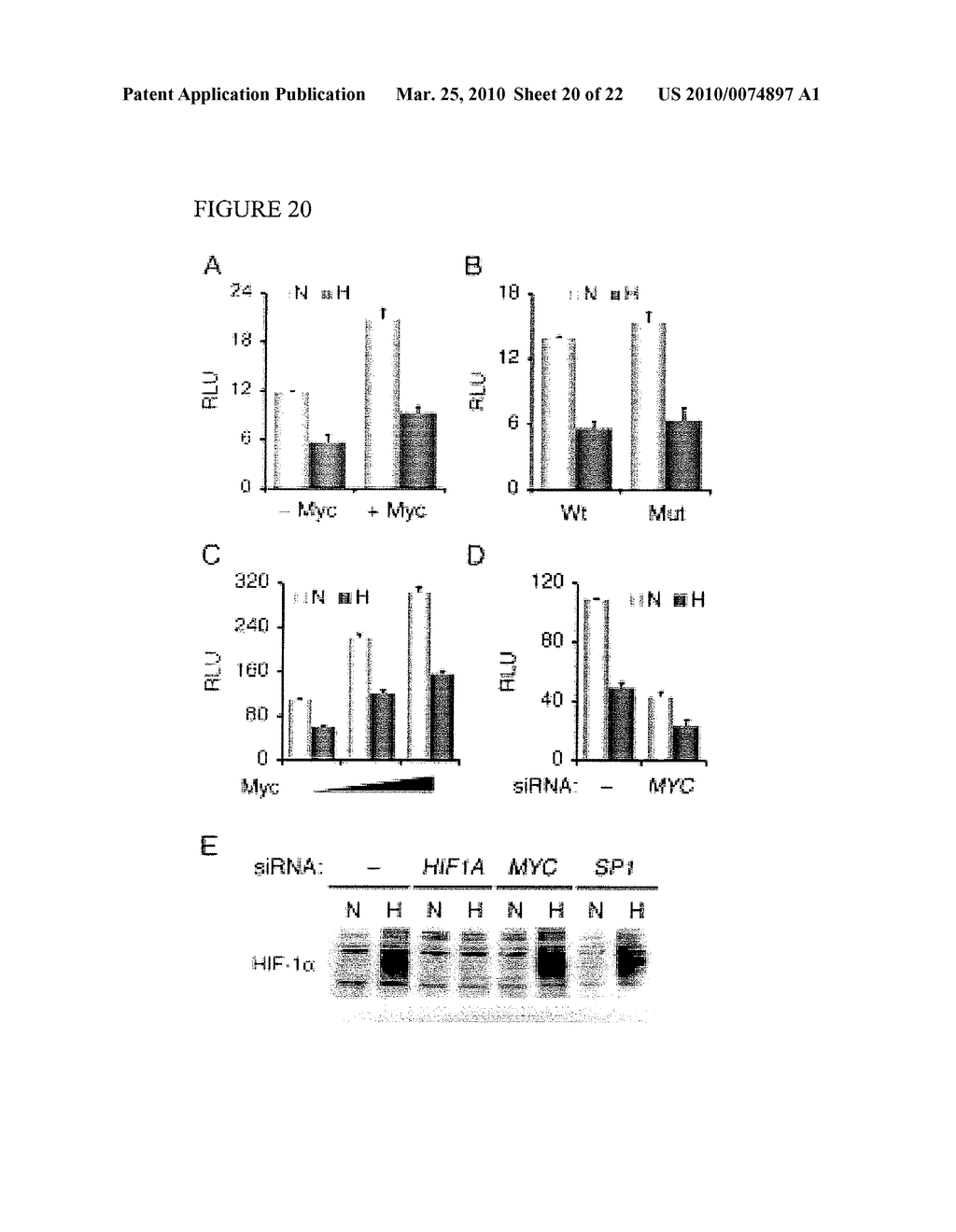 Methods and Compositions related to HIF-1 alpha - diagram, schematic, and image 21