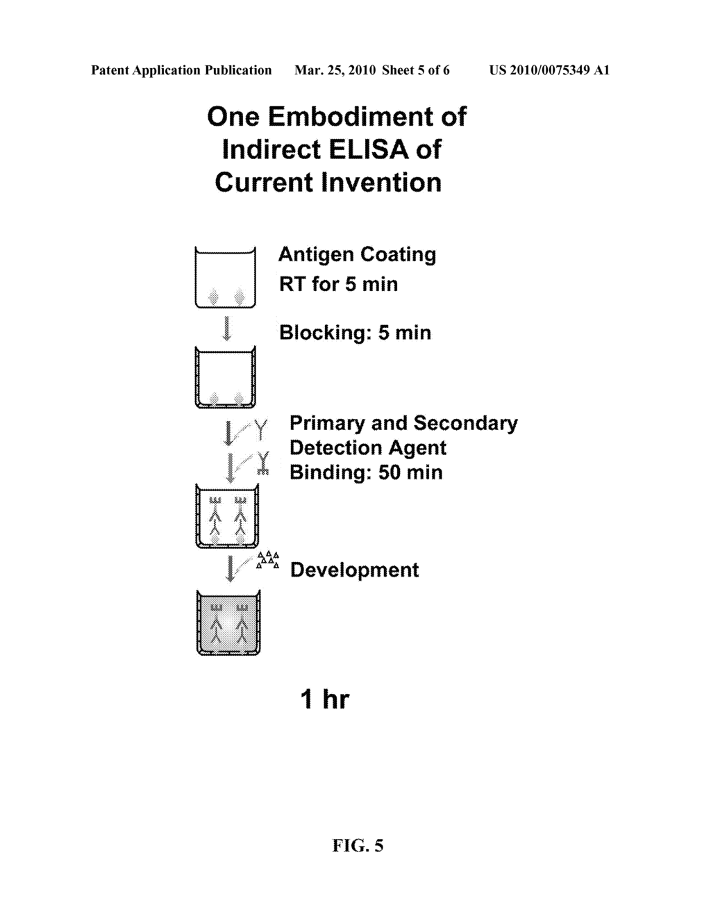 RAPID ELISA PROCESSES AND RELATED COMPOSITIONS - diagram, schematic, and image 06