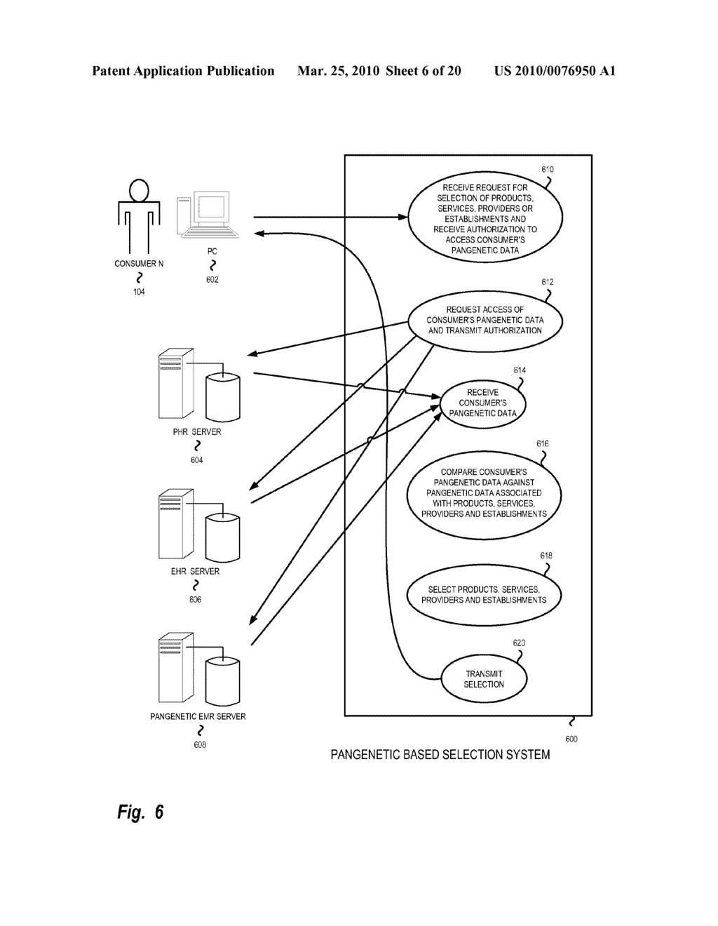 Masked Data Service Selection - diagram, schematic, and image 07