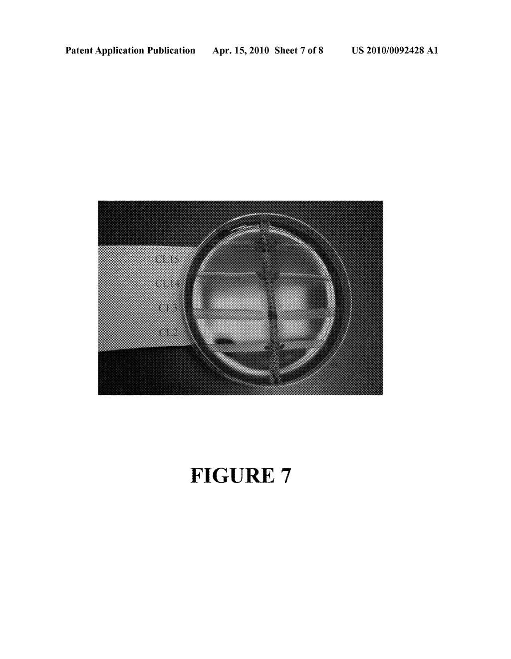 Method For Using A Bacillus Subtilis Strain To Enhance Animal Health - diagram, schematic, and image 08