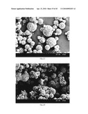 Method of producing porous microparticles diagram and image